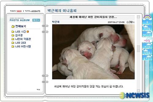 개를 사랑하는 박근혜 후보의 미니홈피