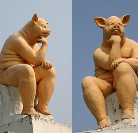 생각하는 돼지