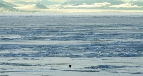 꿈대륙 어드벤처는 남극탐험 같지만 스토리, 보스전, 아이템 등의 요소가 들어간 전혀 다른…어?