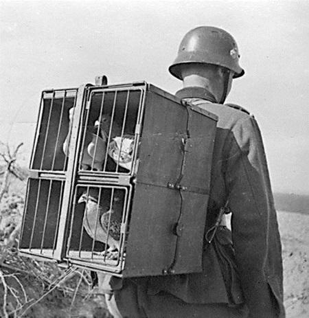 """2차 대전 당시 독일군 통신병의 모습 출처: """"The signalman"""", WW2inColor, http://www.ww2incolor.com/german/20080617.html"""