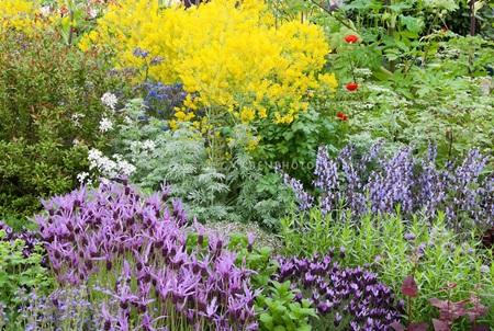 이 시리즈를 다 보고 나면, 이런 완전체 정원을 꾸밀 수 있습니다.