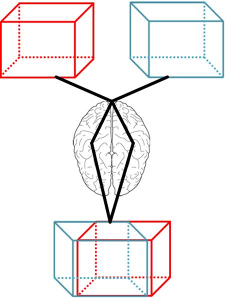 3D는 뇌 단계에서 인식하는 것입니다.