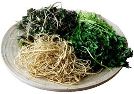 어릴 때부터 이런 야채를 쉽게 먹을 수 있는 아이는 극히 드물다.