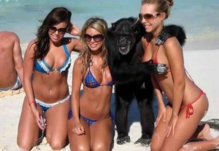 그렇다. 나는 저 원숭이처럼 전생에 나라를 구했을지도 모른다.
