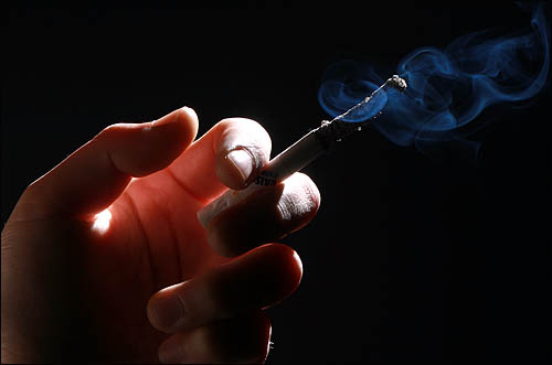 담배의 역사