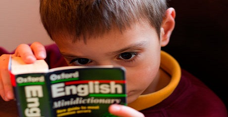 [잘못된 영어공부 통념] 독해 중 사전을 찾지 말라고?