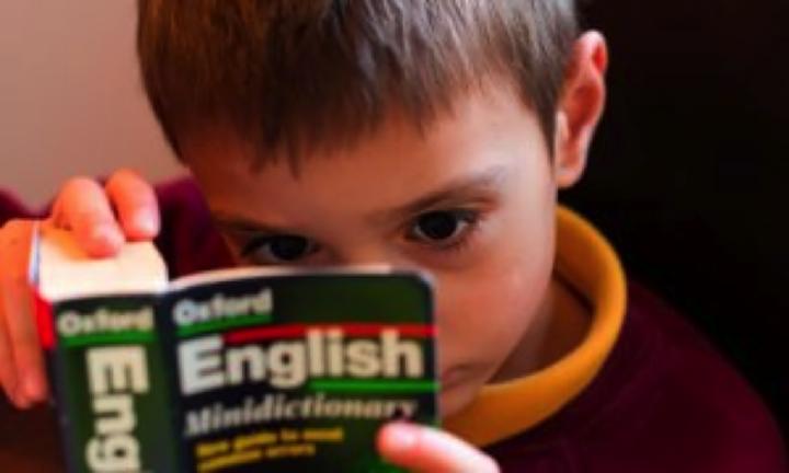 독해 중 사전을 찾지 말라고? 잘못된 영어공부 통념