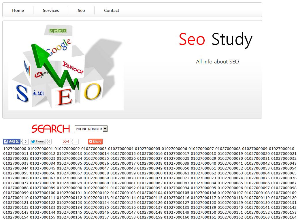 SEO Study?
