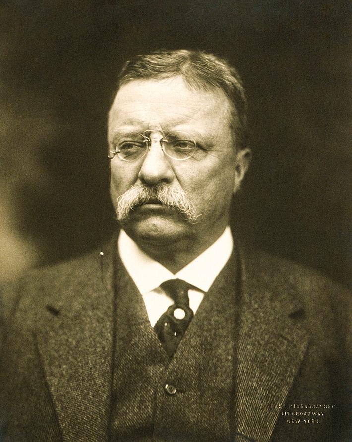 대중에게 주목받는 걸 좋아했던 시어도어 루스벨트. '테디 베어'(!)의 주인공이기도 하다.