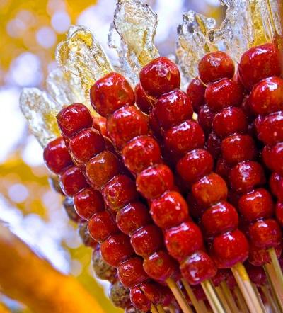 설탕부분만 빨아먹다 정작 과일은 물려서 못먹음.