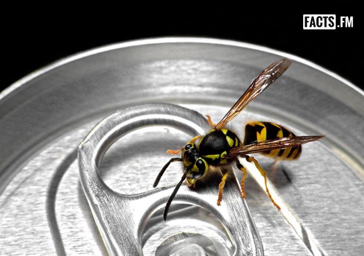 이미지 소스: adclinic.com