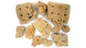 건빵과 함께한 인류 역사의 발전
