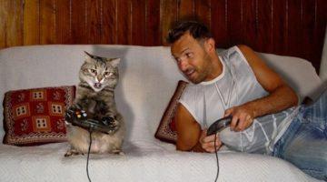 인간은 언제부터 고양이와 함께 했을까?
