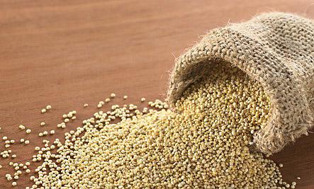 퀴노아(Quinoa)