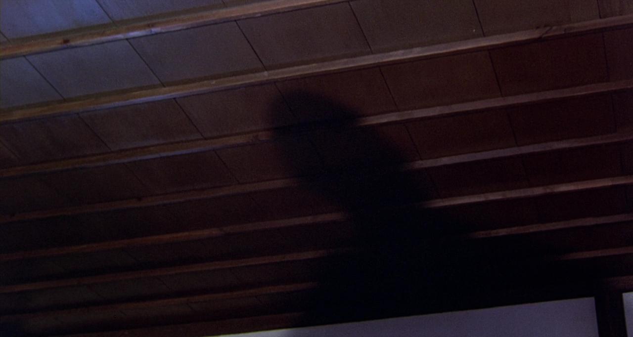 카게무샤는 원래 그림자 무사라는 뜻이다. 구로사와 아키라 감독은 신겐 역할을 하던 도둑의 그림자를 롱테이크로 보여 준다. 그림자는 원본이 없으면 존재할 수 없다. 그렇다면, 도둑은 이제 그림자일까, 아니면 원본 그 자체일까?