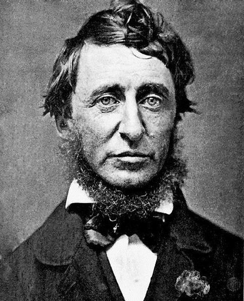 (Henry David Thoreau, 영문학과 여학생들이 꼭 들고 다니던 Walden이라는 책의 저자입니다.)