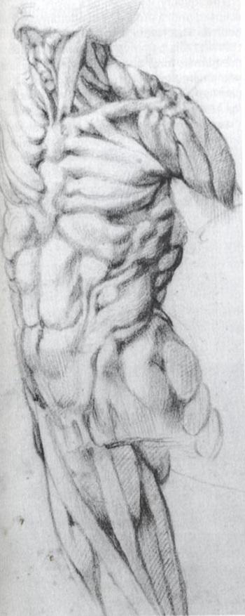 미켈란젤로3