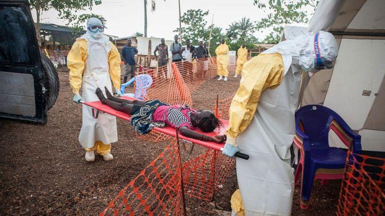 아프리카에서 창궐한 에볼라 바이러스가 흑사병일 수 있다는 주장은 2009년부터 유럽과 영국의 학자들을 통해 제기되어 왔다. 최근 들어 에볼라 바이러스의 확산이 급속도로 늘어나자 전세계는 이에 대한 대응책에 부심하고 있는데 적절한 준비가 없다면 자칫 새로운 흑사병이 될 수 있는 가능성도 보이고 있다.
