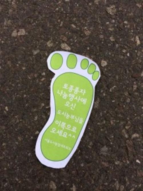 사진= 서울도시농업네트워크. http://cafe.daum.net/cityagric/SMGd/35