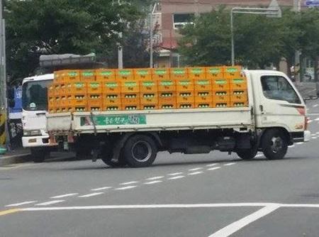 냉장차가 아닌 카고트럭으로 운반되는 생탁