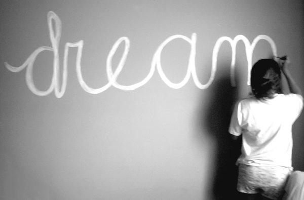 보험과 꿈
