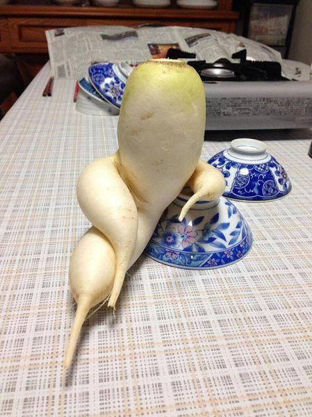 엄청나게 멋있는(O) 맛있는(X) 야채과일 모음