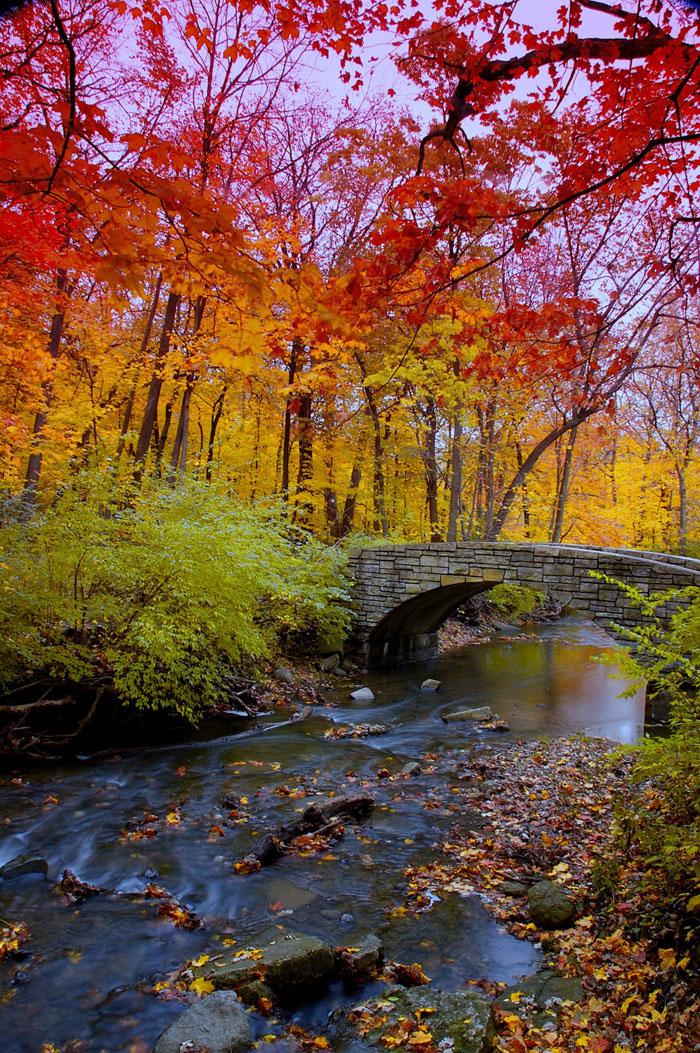 rainbow-color-change-nature-115__700
