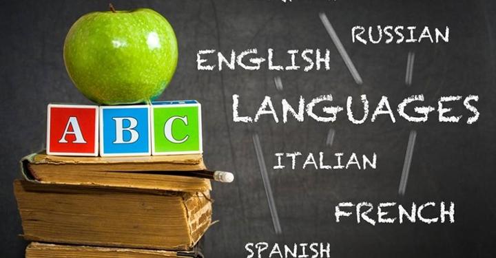 6개월만에 외국어를 익히는 핵심 기법