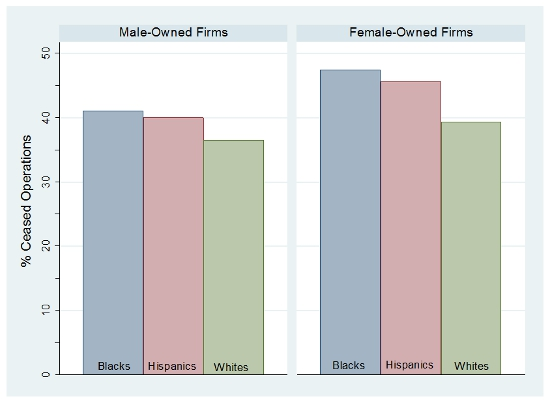 http://blogs.lse.ac.uk/usappblog/2014/07/10/nearly-half-of-new-small-businesses-established-by-black-and-hispanic-women-shut-down-within-a-year/