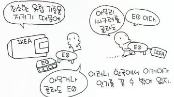 이케아가 한국에서 인기 있는 이유: 유럽 기준의 친환경 목재