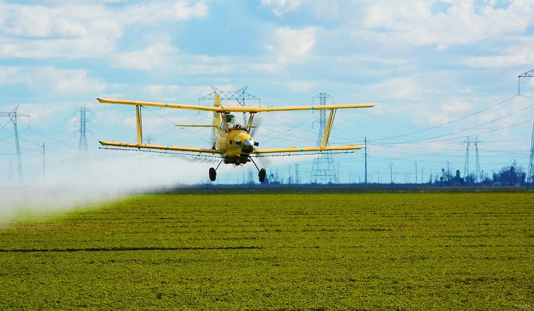 농업의 미래