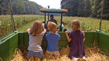 농업이 미래 성장산업이 될 수 있을까
