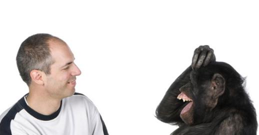 1퍼센트의 차이만이 인간과 침팬지를 구분짓습니다.