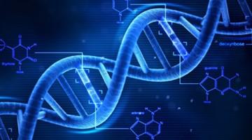 이제 이기적 유전자라는 비유는 버려야 합니다