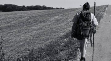 걷기 운동, 그 효과와 올바른 방법