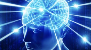 뇌세포들은 어떻게 의식을 가질 수 있는가?