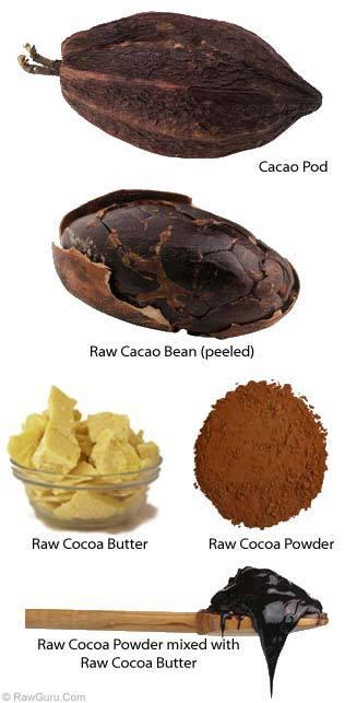 실제 초컬릿은 저렇게 일부러 분리한 코코아 가루와 코코아 버터를 다시 섞어서 만듭니다. 좀 우습지요?