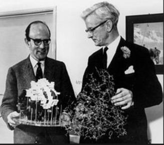 존 켄드류와 단백질 모델배틀을 뜨고 계시는 막스 퍼루츠옹 (왼쪽)