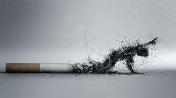 흡연으로 인한 사망 가능성은 알려진 것보다 높다?