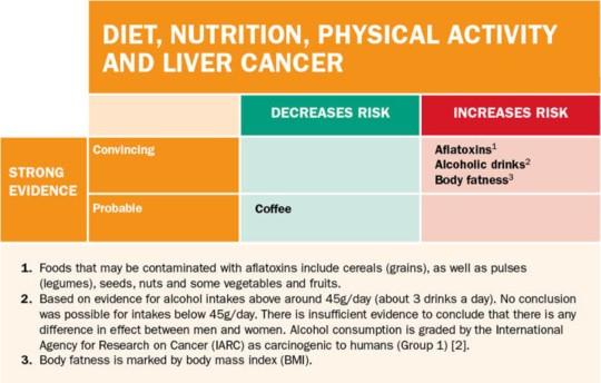 간암의 생활 습관 인자. World Cancer Research Fund International