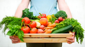 독일에 부는 친환경, 채식주의 열풍