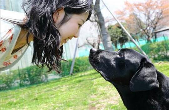 개와 사람이 마주볼때도 옥시토신 수치가 둘 모두에게서 증가했다.