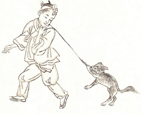 116-dogs