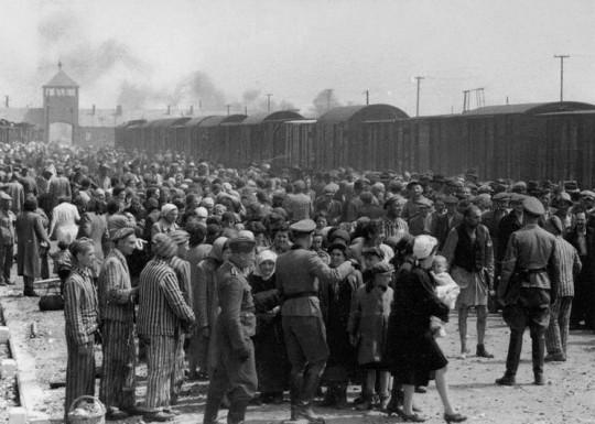 누군가의 의견과는 상관없이 살해당하고 있는 한 무리의 사람들 ─ The Auschwitz Album
