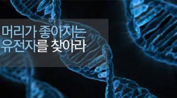 머리가 좋아지는 유전자는 어떤 것일까?