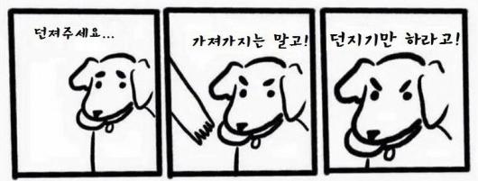 강아지들논리_가져가지말고_던지기만-549x374