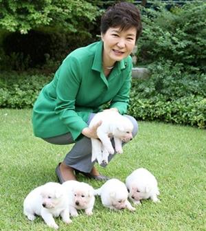 강아지는 박근혜에게 선물됐다.