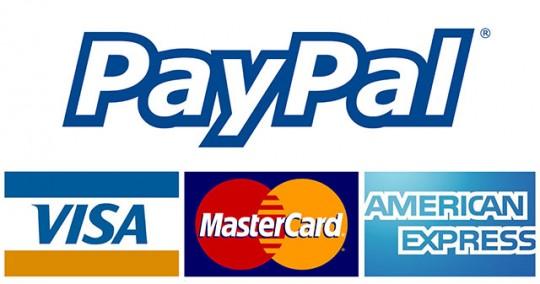 온라인 결제의 혁신을 만든 PayPal 역시 머스크의 손을 거쳤다.
