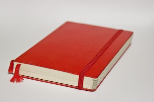 Moleskine diary