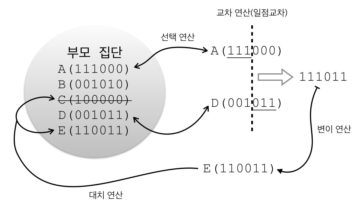 유전 알고리즘의 기본적인 연산 과정